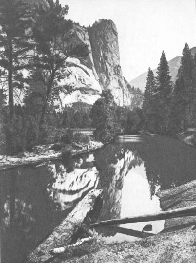 Washingtonov stub, yosemite